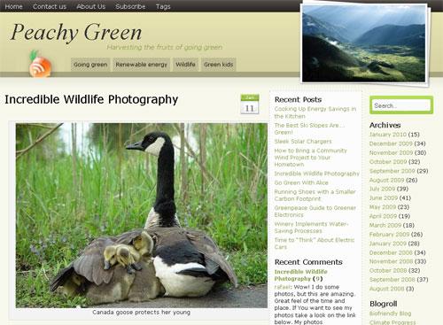 15 Great Wildlife Photos