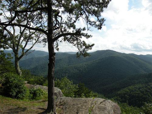 George Washington National Forest